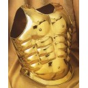 Golden Gladiator Muscle Armor