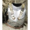 Napoleonic Armor