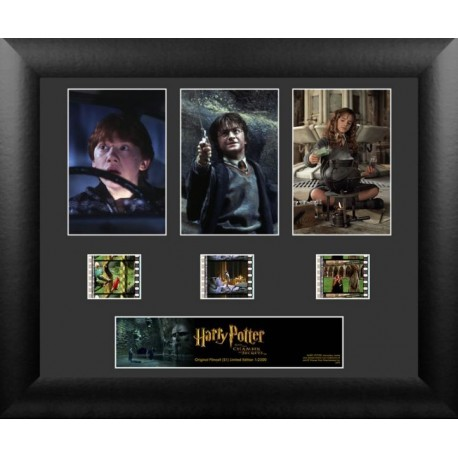 Harry Potter and the Chamber of Secrets Film Cells