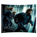 Harry Potter and the Deathly Hallows (Running In The Woods) Art Print