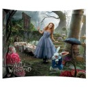 Alice In The Garden StarFire Print